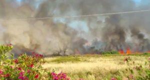 Il fronte del fuoco che avanza all'Isola.